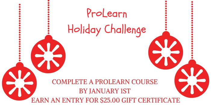 ProLearn Holiday Challenge