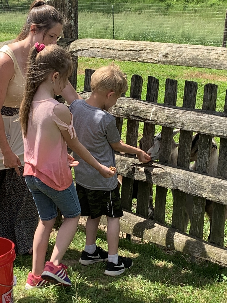 Greyson and Mckenzie feeding goats.