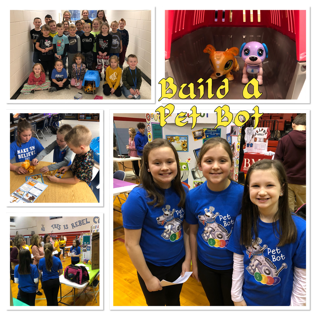Build A Pet Bot is heading to STLP state.
